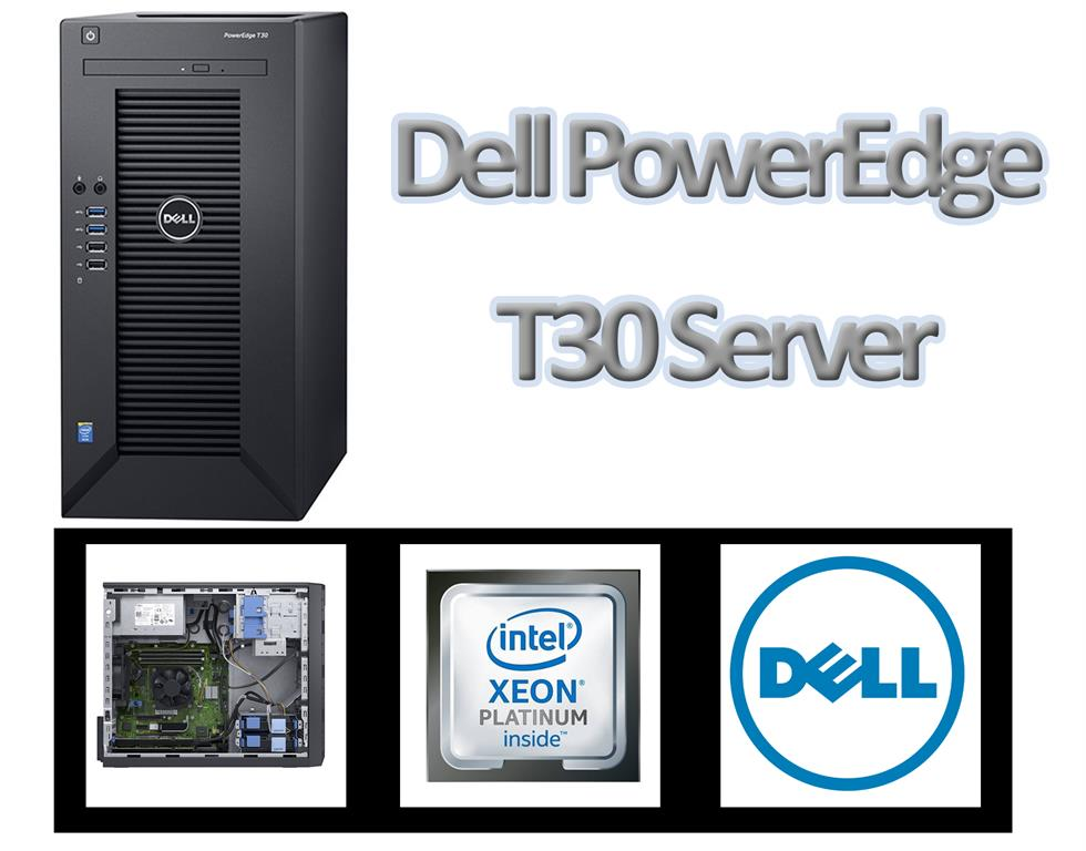 Dell PowerEdge T30 Server - Intel Xeon E3-1225 v5 3 3G 8M